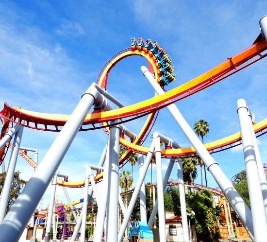 cedar fair research case study by integrated insight