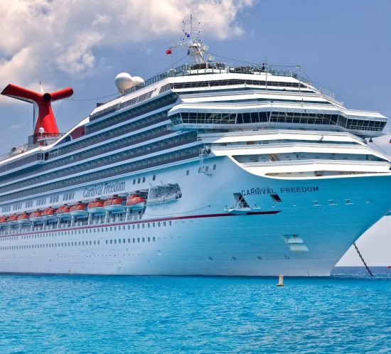 carnival cruise line integrated insight case study
