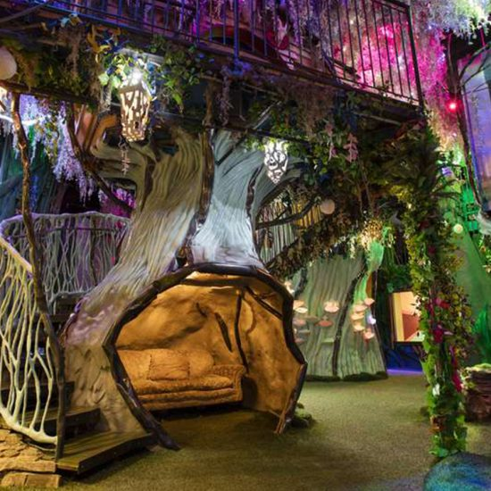 meow wolf case study